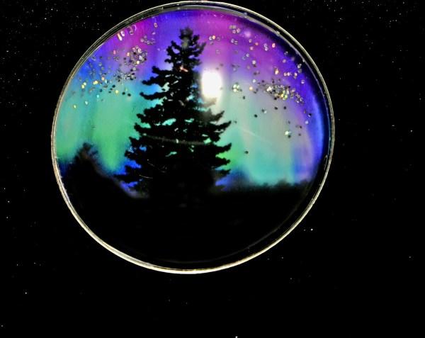 Majestic Pine Northern Lights