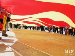 Sous le drapeau