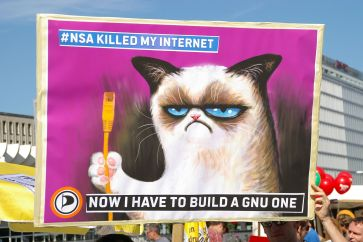 Grumpy cat VS NSA