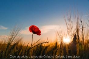 Crédit photo Guillaume Collard - Choix du public 2016