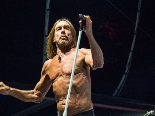 Deferlantes - Iggy Pop-7100589