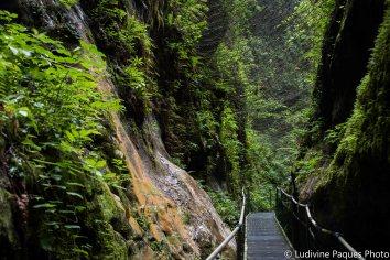 Gorges De la Fou - Crédit photo Ludivine Paques