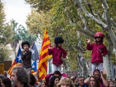 Diada Catalunya Nord - Novembre 2017-040024
