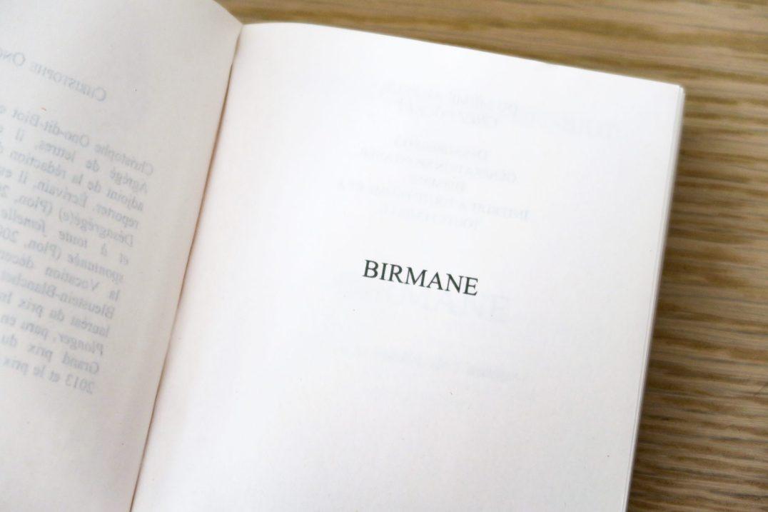 birmane-livre-inspiration-lecture-scaled