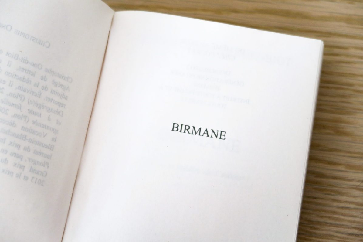 birmane-livre-inspiration-lecture-scaled