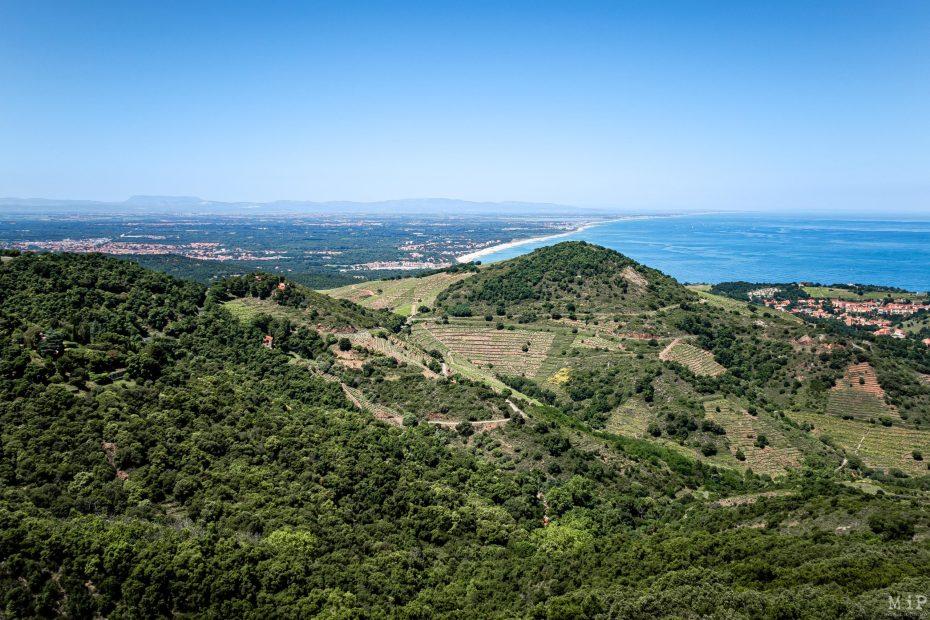 25/05/2020, Collioure, France, Port Vendres, vignes, côte vermeille, fort St Elme © Arnaud Le Vu / MiP / APM