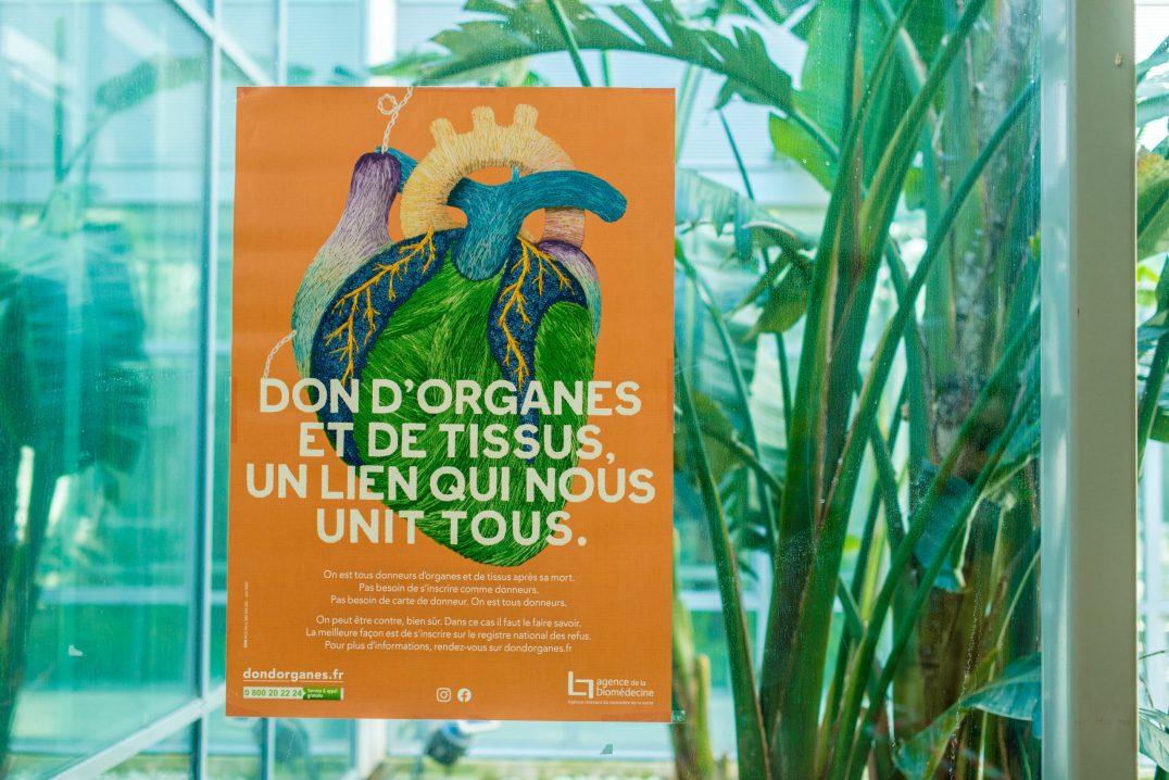 Affiche sur le don d'organes. Photographie © Stephane Ferrer Yulianti