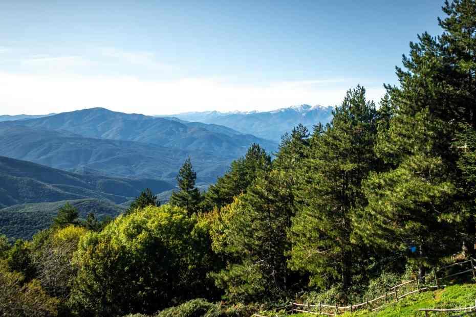 Col de Ouillat Albères à la frontière France Espagne
