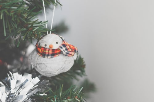 Reusable Products Used for Christmas Decorations