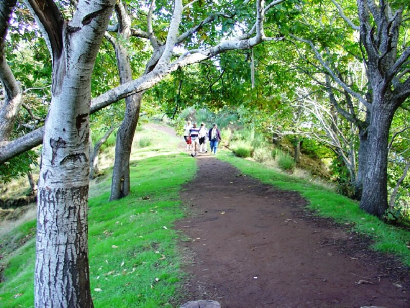 Jardim da Serra and Fontes Half Day Excursion in Madeira (3)