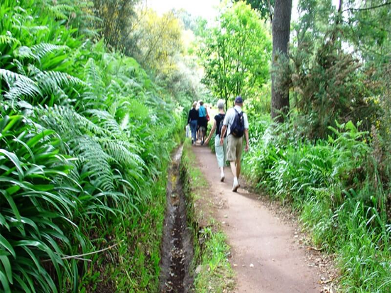 Paradise Valley Levada Walk