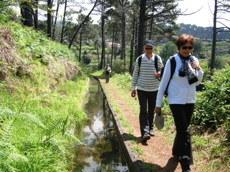 Prazeres to Ponta do Pargo Levada Walk