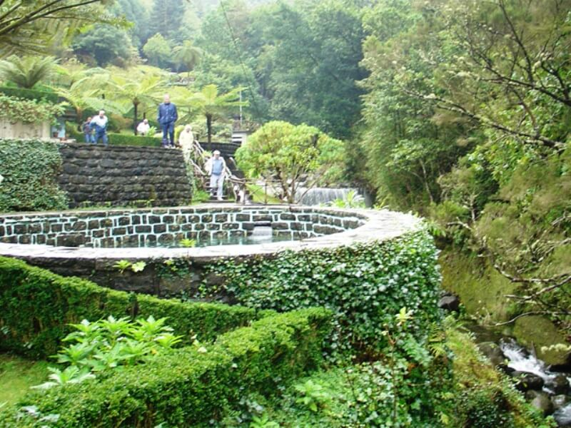 Rose Garden Tour Full Day Excursion in Madeira (1)