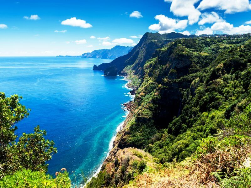 Madeira ISland is unique