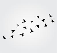 Flying Birds Wall Sticker Flock of Birds wall decal Bird ...