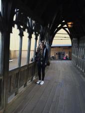 day 7.2 mady on hogwarts bridge