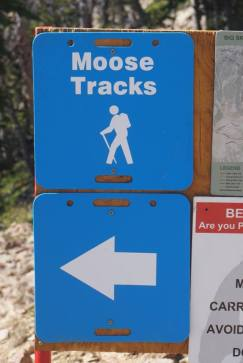 Moose Tracks Trailhead- watch out for bears!