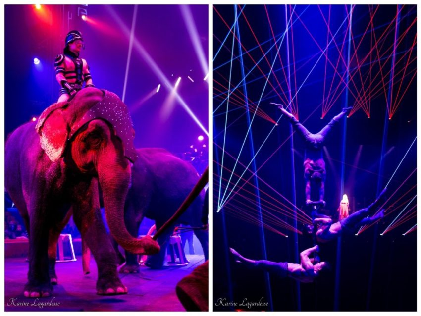 Cirque Arlette Gruss - Blog Made me happy - bordeaux-20 b