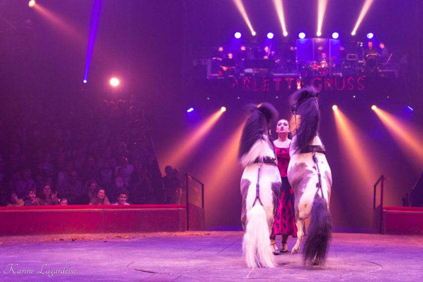 Cirque Arlette Gruss - Blog Made me happy - bordeaux-31