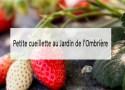 jardin-de-lombriere-made-me-happy-blog-bassin-arcachon-(cover)