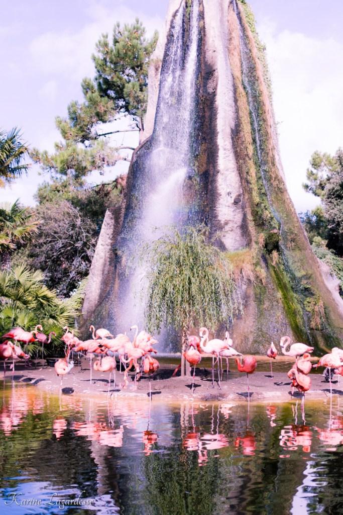 zoo-palmyre-made-me-happy-blog-bordeaux-12