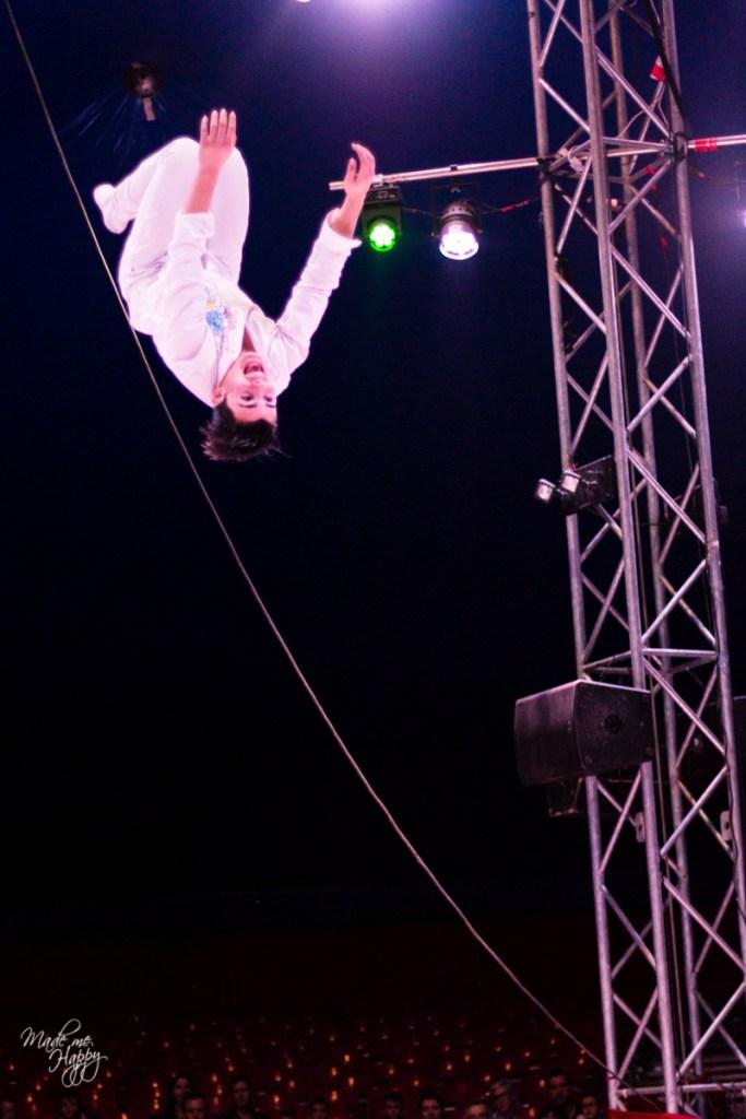 Grand Cirque de Noël - Blog lifestyle Bordeaux-2