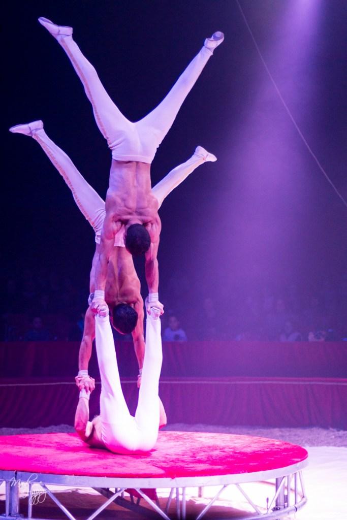 Grand Cirque de Noël - Blog lifestyle Bordeaux-34