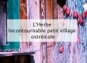 L'Herbe - Incontournable petit village ostréicole du Cap Ferret
