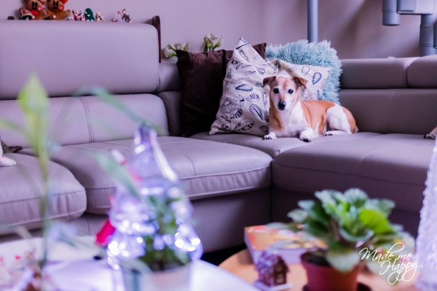 Décoration Noël 2018 - Blog famille Bordeaux
