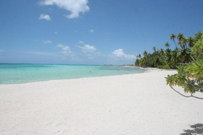 la-plage-the-beach