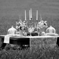 Weddingplaner oder Trauzeugen?