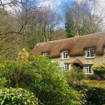 Buckland - Devon