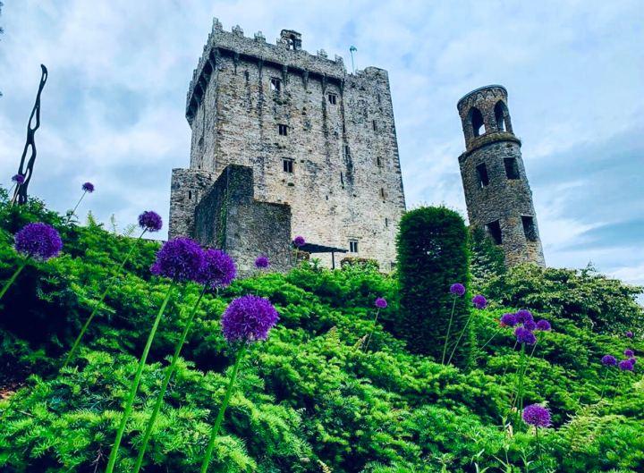 Irlanda: 12 castelli da non perdere