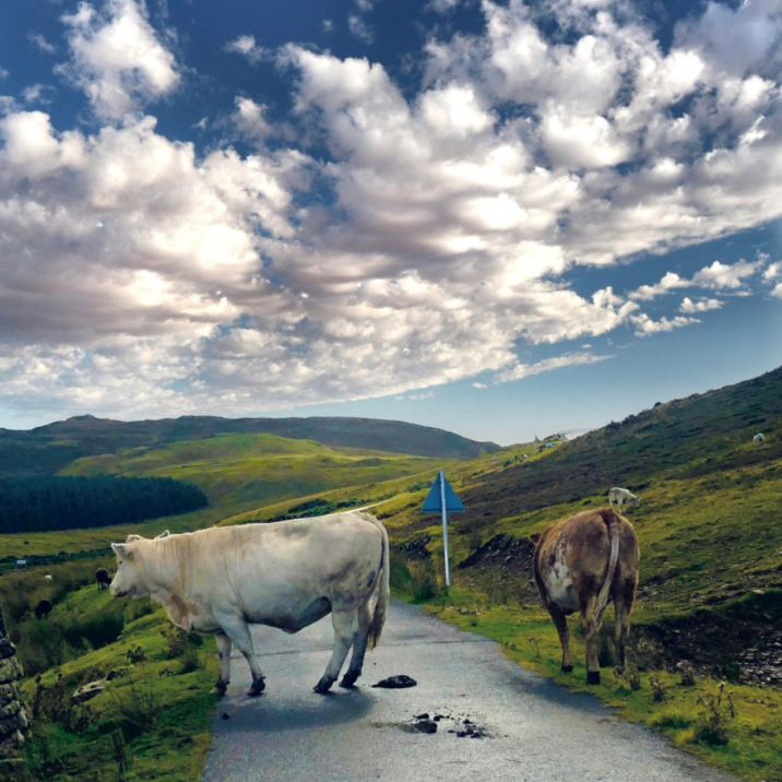 Armandale (Scozia)