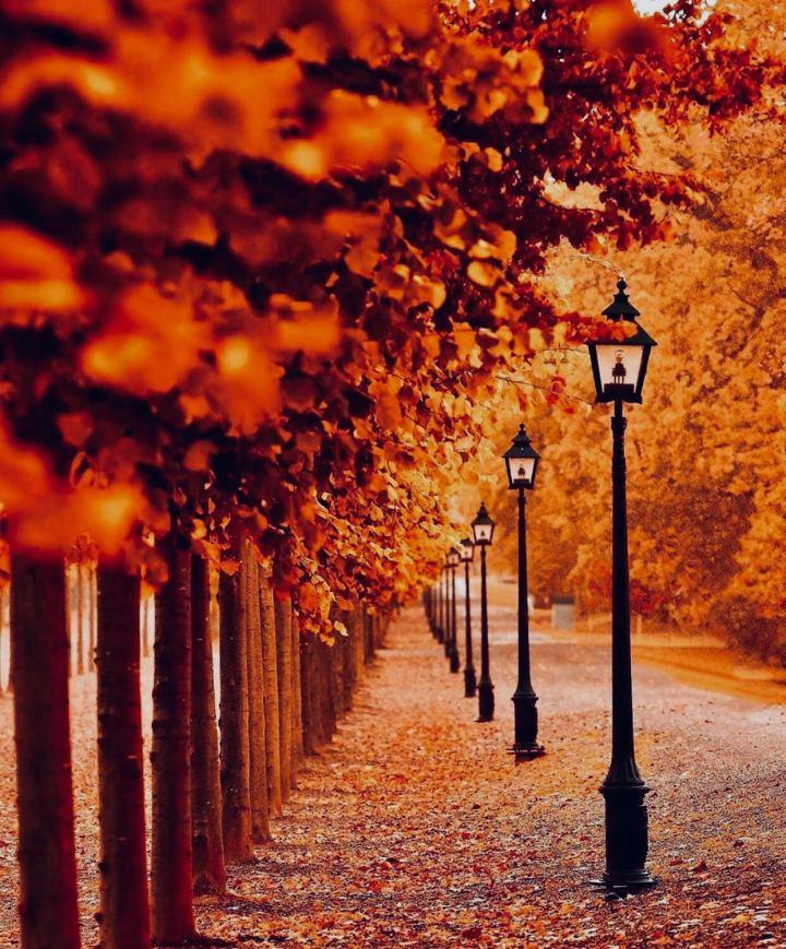 Europa in Autunno:  10 mete romantiche con i colori del foliage