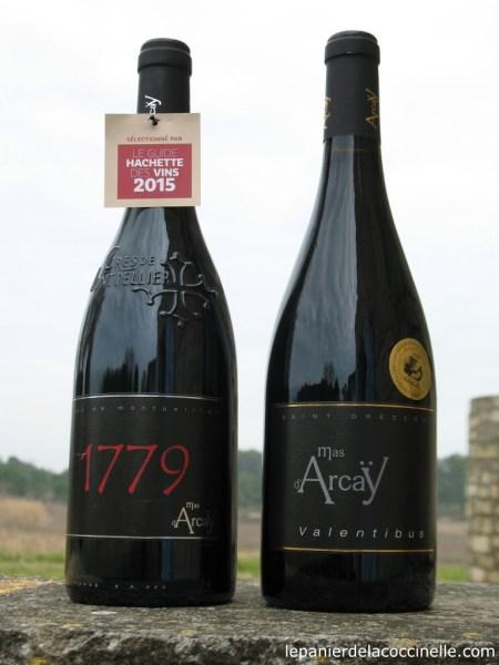 Mas d'Arcaÿ-vin-rouge-1179-Valentibus