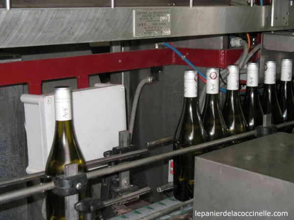 Mas d'Arcaÿ-mise-en-bouteille-vin