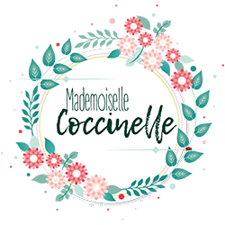 Logo Mademoiselle Coccinelle blog green, mode éthique, made in France.