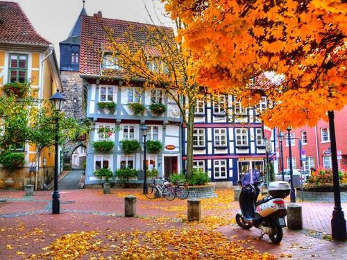 [Inspiration] Autumn colors