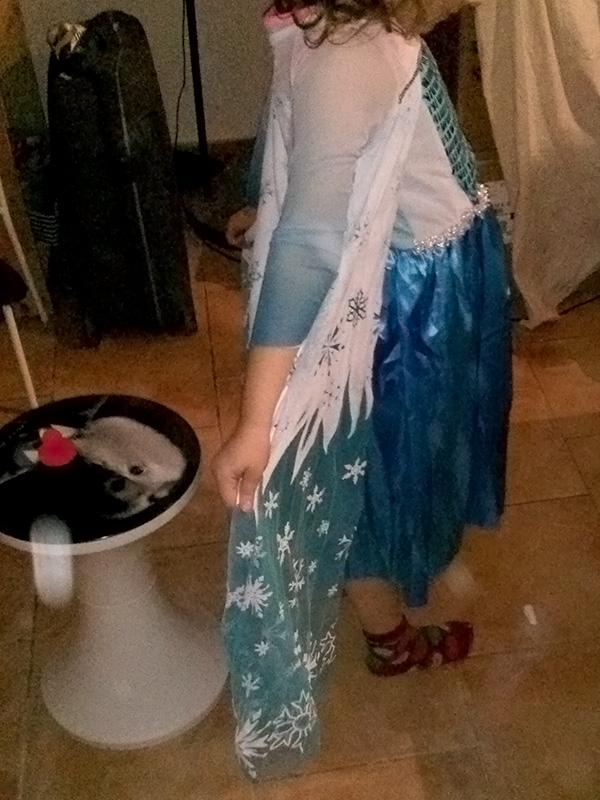 costume Elsa pas cher