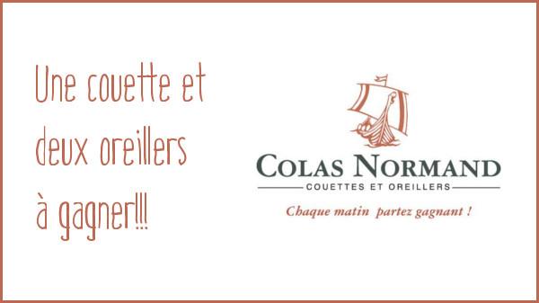 Les dindes font leur rentrée : Colas Normand