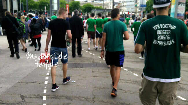 supporters irlandais euro