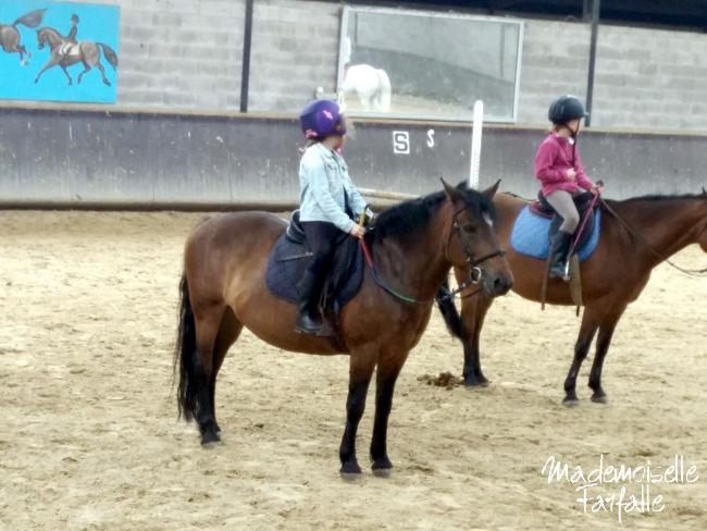 passion du cheval