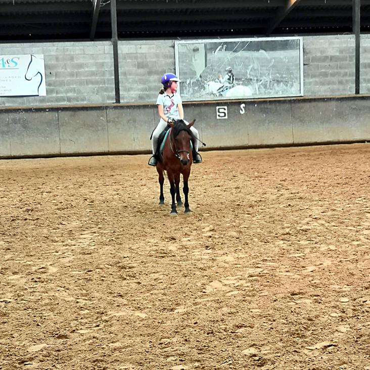 équitation lille