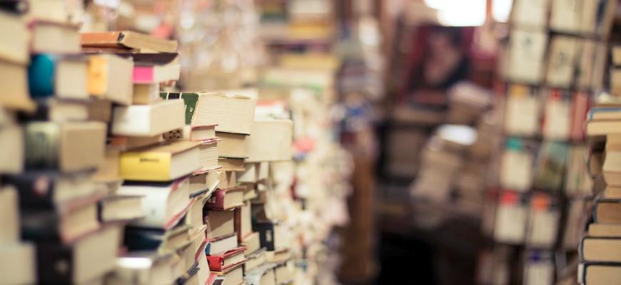 Les livres de la rentrée littéraire 2019 que j'ai envie de lire