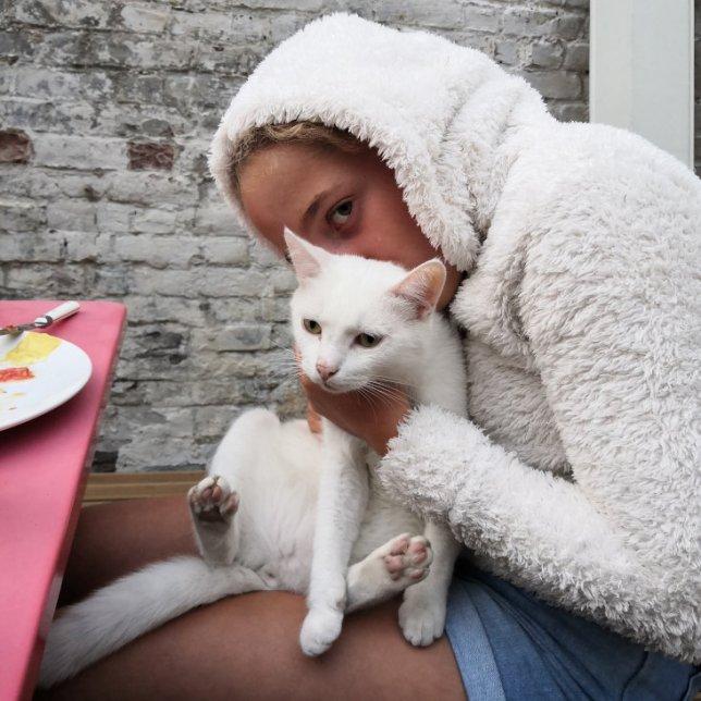 nuage le chat et la Miss