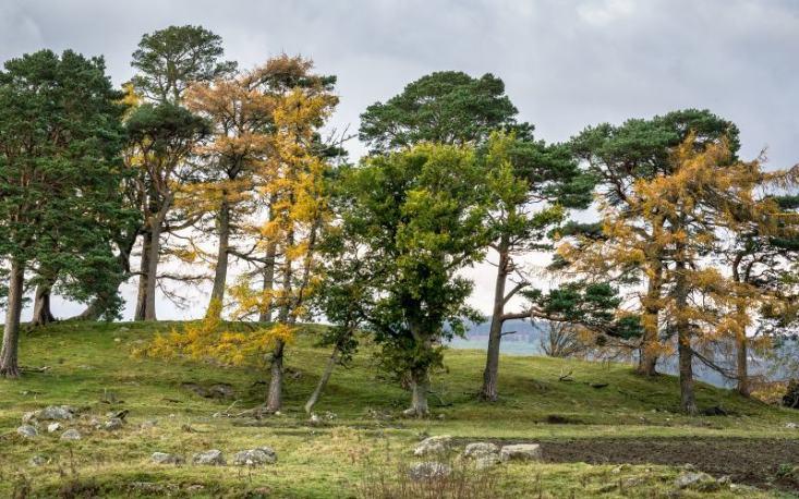 Craigh Na Dun - 7 lieux à visiter en Ecosse - Outlander