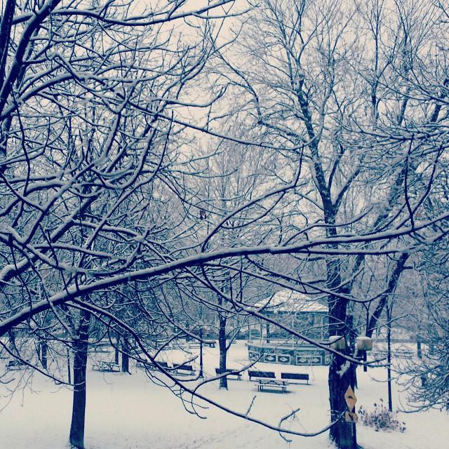 montreal-neige-molson
