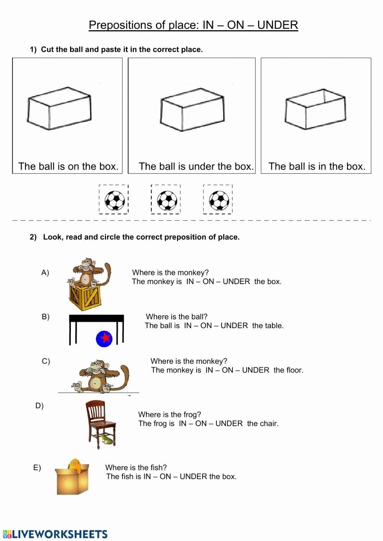 medium resolution of 12 Preposition Worksheets for Grade 1   Worksheets Ideas Printable