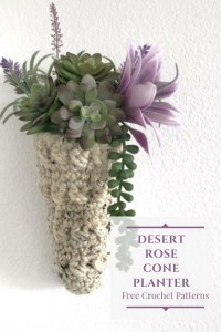 a pinterest image showing the desert rose cone shaped plant hanger